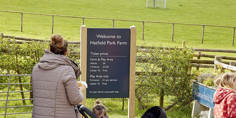 Hatfield House 8