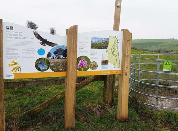 Wiltshire Wildlife Trust Coombe Bissett Down 6